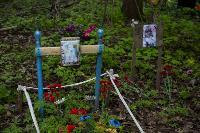 Кладбище домашних животных в Туле, Фото: 44