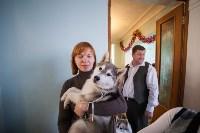 Выставка собак в Туле, 29.11.2015, Фото: 40