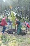 В Пролетарском районе высадили молодые деревья, Фото: 16