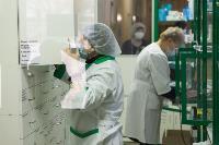 В Киреевске поликлинике помогают волонтеры, Фото: 1