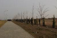 Возле мемориала «Защитникам неба Отечества» высадили еловую аллею , Фото: 22