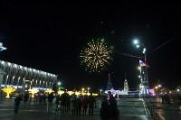 В Туле завершились новогодние гуляния, Фото: 35