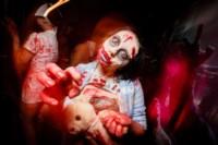 Хэллоуин-2014 в Премьере, Фото: 24