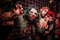 Хэллоуин-2014 в Премьере, Фото: 20