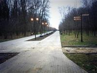 Открытие аллеи Победителей в Центральном парке Тулы, Фото: 2