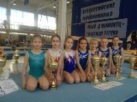 Туляки на соревнованиях по спортивной гимнастике в Брянске., Фото: 19