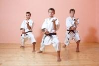 Каратэ, гимнастика и другой спорт для детей в Туле, Фото: 8