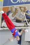 Первый этап Всероссийских соревнований по спортивной гимнастике среди юношей - «Надежды России»., Фото: 16