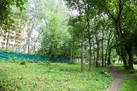 Яблоневый сад и роща на ул. Серова, Фото: 2