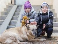Собака Люся расплачивается за незаконно установленные батареи, Фото: 5