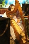 Кельтская арфа. Филипп Барский в Туле, Фото: 4