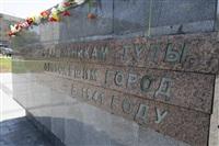 Празднование 69-й годовщины победы в Великой Отечественной войне на площади Победы. Тула, Фото: 79