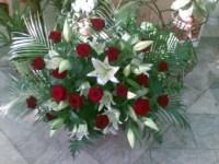 Селена Флора, магазин цветов, Фото: 2