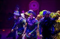 Шоу фонтанов «13 месяцев» в Тульском цирке – подарите себе и близким путевку в сказку!, Фото: 6