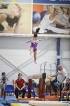 Спортивная гимнастика в Туле 3.12, Фото: 109