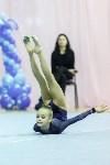Кубок общества «Авангард» по художественной гимнастики, Фото: 20
