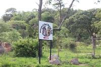 Конкурс красоты в Зимбабве. Рассказывает Наташа Полуэктова, Фото: 48