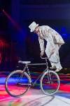 Тульский цирк, Фото: 37
