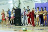 Кубок общества «Авангард» по художественной гимнастики, Фото: 15