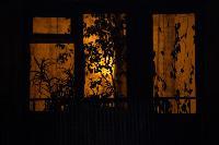 День светящихся окошек в объективах фотографов Myslo, Фото: 9