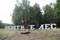 """Арт-объект """"Берегите лес"""" на въезде в Тулу, Фото: 2"""