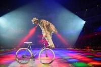 Открытие тульского цирка, Фото: 63