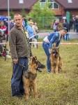 Международная выставка собак, Барсучок. 5.09.2015, Фото: 51