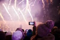 Главную ёлку Тулы открыли грандиозным фейерверком, Фото: 17