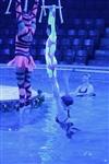 Aqua Show в Тульском цирке, Фото: 6