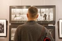 Открытие выставки Андрея Лыженкова, Фото: 20