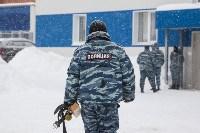 """""""Студенческий десант"""" - 2017., Фото: 46"""