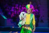 """""""Тайна пирата"""" в Тульском цирке, Фото: 97"""