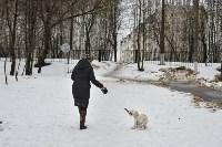 В Комсомольском парке прошёл рейд по выявлению собачников-нарушителей, Фото: 21
