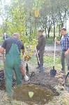 В Пролетарском районе высадили молодые деревья, Фото: 19