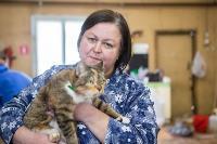 Волонтеры спасли кошек из адской квартиры, Фото: 53