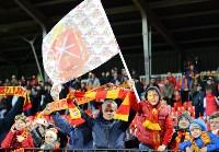 «Арсенал» Тула - «Сибирь» Новосибирск - 3:1., Фото: 142