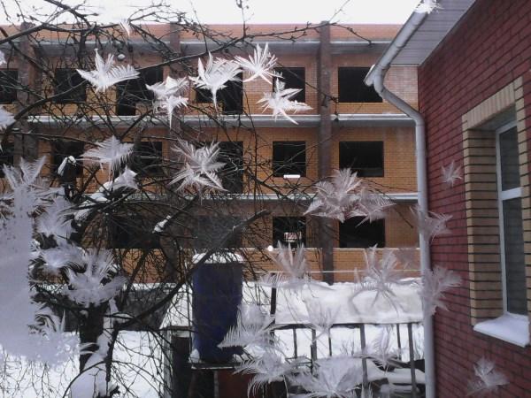 Это не летающие глюки. Это крещенские морозы разукрасили окно :-)