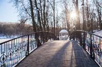 Морозное утро в Платоновском парке, Фото: 1