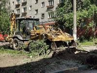 вырубка деревьев во дворе дома №33 по ул. Горького в Туле, Фото: 11