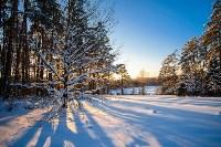 Снежное Поленово, Фото: 56