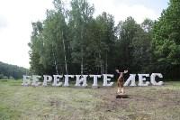 """Арт-объект """"Берегите лес"""" на въезде в Тулу, Фото: 1"""