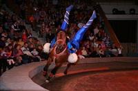 Новая программа в тульском цирке, Фото: 2