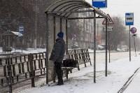 Мартовский снег в Туле, Фото: 61