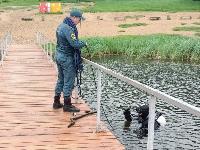 В пруду Центрального парка работала водолазная группа, Фото: 12