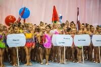 Открытый кубок региона по художественной гимнастике, Фото: 19