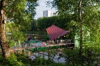Запуск лебедей в верхний пруд Центрального парка Тулы, Фото: 30