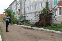 Последствия урагана в Ефремове., Фото: 48