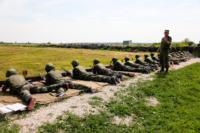 Военно-патриотической игры «Победа», 16 июля 2014, Фото: 60