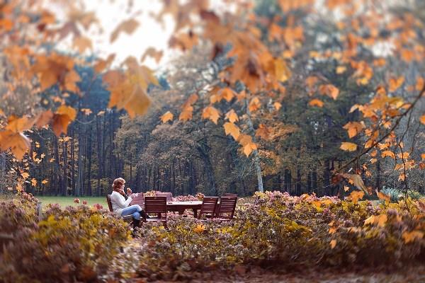 вот такую осень все любят!!!  сидишь, кофе пьешь......