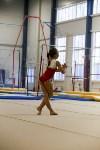Спортивная гимнастика в Туле 3.12, Фото: 143